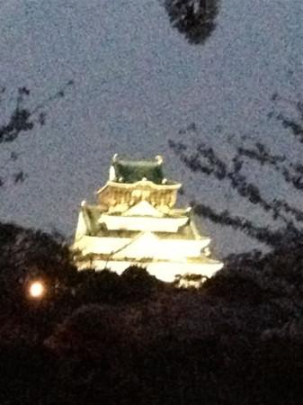 大阪城お花見02