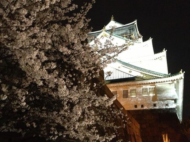 大阪城お花見01